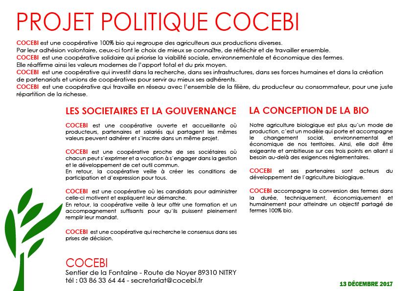 projet politiquePlan de travail 3-100